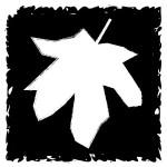 TR leaf